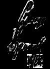 george digweed signature